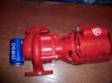 Bell & Gossett 102210 1/6 HP, HV NFI Circulator Pump 3